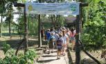 Wakacyjna wycieczka dzieci do ogrodu dendrologicznego