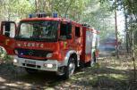 Pożar lasu w Mościczkach